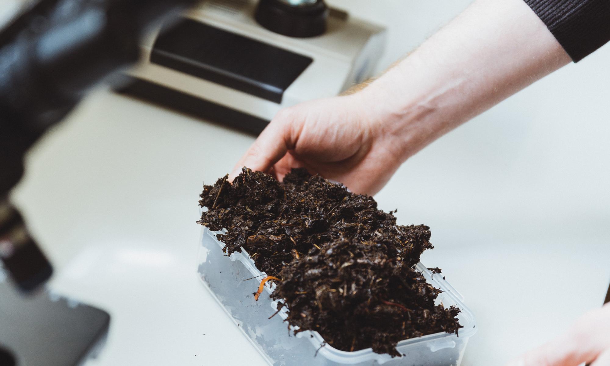 Soil Ecology Laboratory